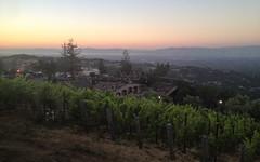 IMG_2346 (kz1000ps) Tags: tour2016 california sanfrancisco bayarea saratoga mountainwinery vineyard siliconvalley aerial vista skyline evening night sunset dusk