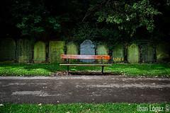 El banco (Iban Lopez (pepito.grillo)) Tags: ibanlopez liverpool cementerio saintjamescemetery cemetery catedraldeliverpool liverpoolcathedral banco bench d90