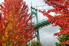 Red October (Ian Sane) Tags: ian sane images redoctober red leaves trees autumn fall colors rain clouds framed st johns bridge portland oregon cathedral park willamette river nature perspective canon eos 5d mark ii two camera ef1740mm f4l usm lens