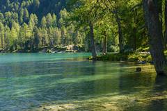 Lai da Palpuogna im Parc Ela (balu51) Tags: ausflug spaziergang landschaft see bergsee grn trkis wasser wald graubnden laidapalpuogna bergn herbst september 2016 copyrightbybalu51