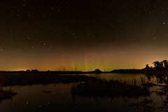 Big Dipper and Aurora-46234.jpg (Mully410 * Images) Tags: wildliferefuge northernlights astronomy stars sherburnenationalwildliferefuge trees aurora night longexposure silhouette bigdipper