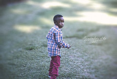 Zion (taylormackenzie) Tags: little boy autumn fall october halloween pumpkin patch plaid shirt happy threenager three years old red pants toddler kid child son lineberger farm north carolina outside sunlight cute adorable baby smiles fun playful
