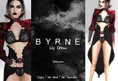 (BYRNE) LizDressAD-Crimson (ByrneDarkly-www.tartiste.wordpress.com) Tags: swank byrne mesh fashion goth womens dress lace leather spooktacularlygothhunt