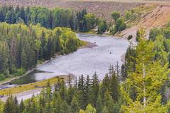 Snake River (gunigantip) Tags: moose wyoming unitedstates us gtnp grandtetonnationalpark grandtetons tetons nationalpark snakeriveroverlook
