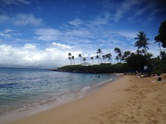 kapalua bay (citymaus) Tags: kapalua bay maui beach snorkeling sand palm trees hawaii