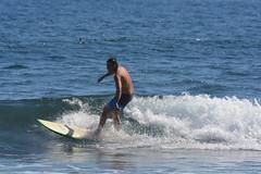 DSC_0085 (aliciadesign) Tags: surf whales bigisland honolii