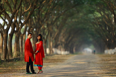 Red in Green (AvijitNandy) Tags: