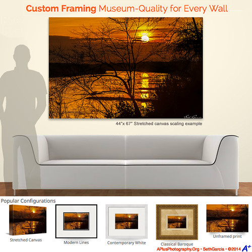 Enhance the aesthetics of your home or office with a LifeTouch Canvas by APlusPhotography