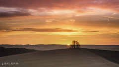 A glimpse of morning (Andy Hough Photography) Tags: morning trees england orange sun sunrise landscape countryside unitedkingdom sony hills tamron wallingford wittenhamclumps southoxfordshire barrowhill a99 so
