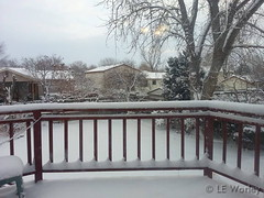 December 26, 2014 - A healthy shot of snow in Thornton. (LE Worley)
