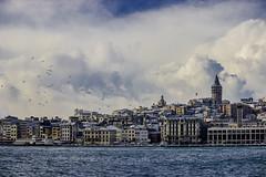 istanbul.. (mmmeliiik) Tags: blue sea turkey istanbul goodmorning mavi galata martı aniyakala