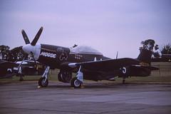 P-51D Mustang 'Candyman-Moose' (Pentakrom) Tags: film movie memphis aircraft aviation north moose american duxford belle 1989 mustang candyman p51 n51jj