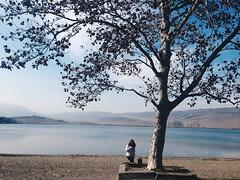 Relax!! (Mariam_arsenashvili) Tags: blue sky sun lake tree nature beauty georgia is day shine natural more minimalism less tbilisi shinning iphone