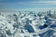 Frozen Lake Erie looking toward Cedar Point (ronnie44052) Tags: winter ohio lake ice frozen marblehead lakeerie greatlakes ohiowinter