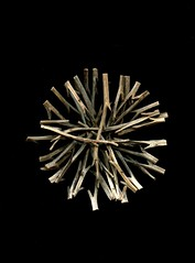 56535.01 Hemerocallis (horticultural art) Tags: circle mandala stems hemerocallis horticulturalart