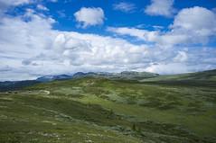 Sommer på fjellet (Kjell-Arne) Tags: