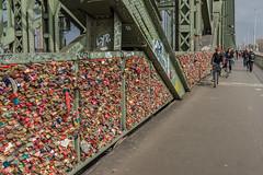 Padlocks in the Hohenzollern Bridge (Rodolfo Ribas) Tags: bridge germany cologne koln padlocks hohenzollern