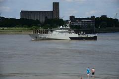 P902 Pollux DST_5074 (larry_antwerp) Tags: 2016 antwerp antwerpen       port        belgium belgi          schip ship vessel        schelde        p902 pollux military militair tallshipsrace