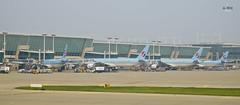 Korean Air jets (A. Wee) Tags: korea  incheon airport  seoul  koreanair