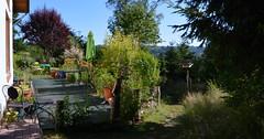 DSC_0971-1 (Chaumurky) Tags: h garden