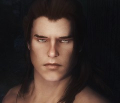 Danid - Male Nord character preset (teriric) Tags: face character characters mods preset presets skyrim tesv racemenu
