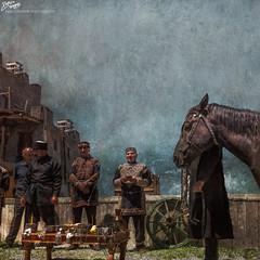 Caucasus / Georgia / Georgian Horse Ceremony (Pablo A. Ferrari) Tags: pabloferrariphotography georgia caucasus tradition ceremony ceremonial horse horses ceremonia caballo caballos tradicion
