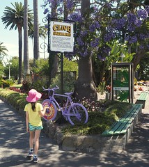 A Bike At Clive Square (foilman) Tags: poppy bike clivesquare napier