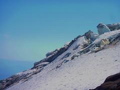 Newton Clark Glacier (mmcg6302) Tags: mount hood oregon cooper spur hiking