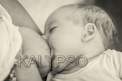 Close Up Of Mother Breast Feeding Her Newborn Baby Boy (kalypsoworldphotography) Tags: monochrome newborn child milk mother baby childhood parent breast food breastfeeding care healthy kid drink eating caucasian face family love human nutrition motherhood sucking parenting suck breastfeed son dairy boy hand holding comfort woman chest bonding closeup feed eat happy mom nipple lips nutritious maternal laying finger peaceful cute