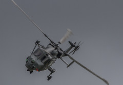 The Wildcats (Hawkeye2011) Tags: aircraft aviation airshow military riat uk 2016 raffairford helicopter royalnavy fleetairarm westland wildcat naval