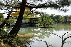 Kinkakuji VI (Douguerreotype) Tags: shrine temple buddhist kyoto japan buildings gold architecture water pond reflection pavilion