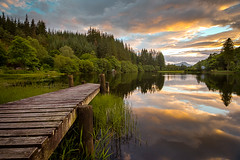 Loch Ard (Francis Mridha) Tags: beautifulscotland clouds francismridhaphotography landscape loch lochard longexposure nikon reflection scotland sunset travel tree uk visitscatland water westscotland