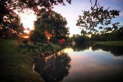 Dog Day Afternoon (dorameulman) Tags: dorameulman dogdayafternoon summer august sunset landscape lake heatherlock gastonia northcarolina
