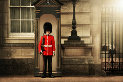 The guards at Buckingham Palace (pentlandpirate) Tags: guard soldier army buckinghampalace queen london england scotsguards britisharmy infantry
