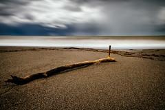 Wasteland (blondmao) Tags: vscofilm floatsam marinadibibbona toskana italy sea longexposure tuscany 10stopper bibbona sand beach clouds mediterranean waves branch