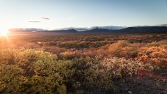 Life on Mars (Daveography.ca) Tags: plains iceland thingvellir sunset alien mountains landscape ingvellir mars clouds