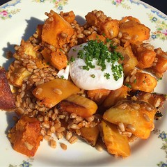 Tasty veggie hash for #brunch yesterday from @stompdelray #goodfood #delray #va (jeen-dee-ann-dree-uh) Tags: virginia alexandria delray stompingground sweetpotato egg poached food instagramapp square squareformat iphoneography