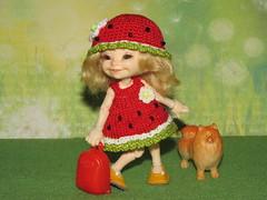 IMG_4748 (cat-soft paws) Tags: realpuki spitz dog case suitcase joy laughter smile soso sundress panama green yellow red watermelon mood