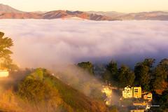 Fog (davidyuweb) Tags: low fog sfist golden gate bridge sunrise
