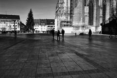 """.. in wisdom gathered over time I have found that every experience is a form of exploration...""  - by Ansel Adams (eggii) Tags: ulm germany badenwrttemberg bavaria bw monochrome"