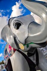 DSC_0694 (Ray Snell) Tags: sheffield meadowhall elephants herd elephant
