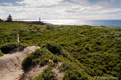 Griffiths Island Lighthouse (1859), Port Fairy, Victoria. (andrew52010) Tags: greatoceanroad griffithisland holiday lighthouse portfairy victoria victoria2016