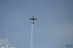 Musal(74) (RAICA Fotografia) Tags: voar musal rj fumaa esquadrilha ceu caracal