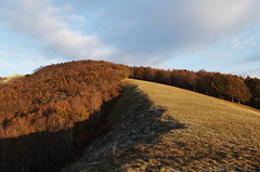 Monti Simbruini (SS) Tags: autumn trees light sky italy clouds forest landscape evening view pentax lazio k5 appennino 2014 ss montisimbrini