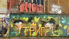 Camouflage Eyes by Trip (Digger Barnes) Tags: street brown streetart green art amsterdam graffiti andrew ndsm repas 2795