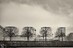 Tuileries Gardens Paris France (Mikes Right Eye) Tags: winter bw mist paris france architecture xpro fuji louvre jardin des tuileries softlight