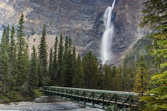 """Takakkaw Falls • <a style=""""font-size:0.8em;"""" href=""""http://www.flickr.com/photos/92159645@N05/16049227947/"""" target=""""_blank"""">View on Flickr</a>"""
