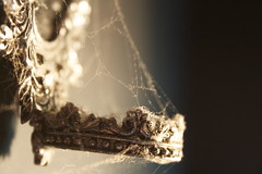 Creature Comforts (tiki.thing) Tags: old silver mirror spider shine web gothic cobweb dust ornate candleholder