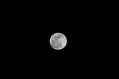 Joseanmomo-05-03-15-0011.jpg (joseanmomo) Tags: moon luna ibiza nocturna eivissa lunallena marzo apogeo miniluna