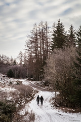 Walking up the mountain (james.archibald) Tags: trees winter mountain snow cold tree woodland scotland highlands bennevis
